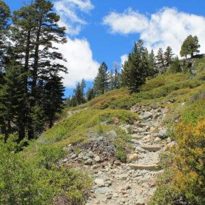 Trekking W Górach Sierra Nevada