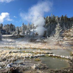 Wycieczka Do Parku Narodowego Yellowstone