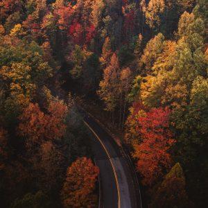 Jesień Na Wschodnim Wybrzeżu USA