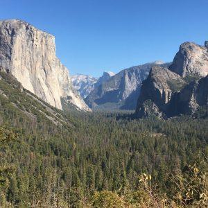 Camping W Yosemite, California